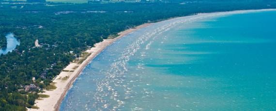 Bagaimana Belut Merak Asal Asia Tenggara Bisa Berada Di Danau Kanada?