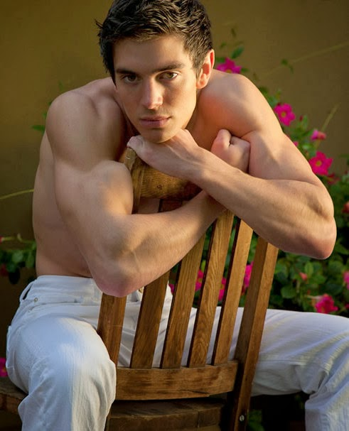 Steve Grand Gay Country