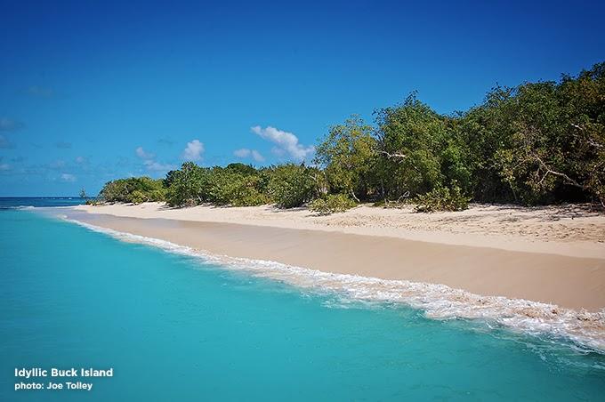 Buck Island, St. Croix. Copyright Joe Tolley 2014 TravelBoldly.com