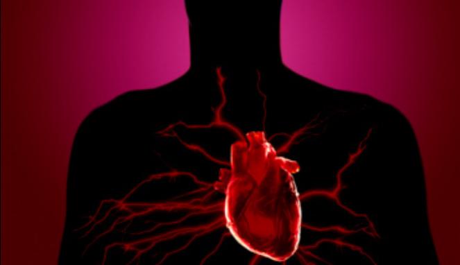 5 Makanan Yang Bagus Untuk Kesehatan Jantung
