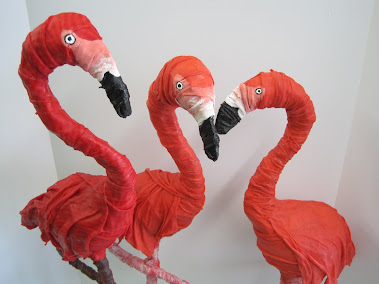 A Gaggle of Flamingos