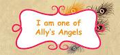 Ik ben DT-lid van Aly's Angels (start 1-1-18)
