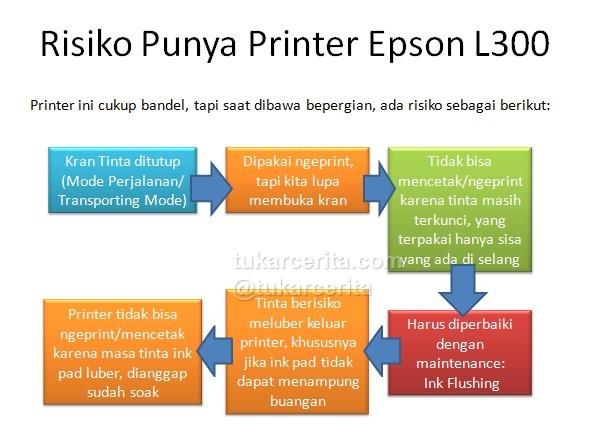 risiko printer epson L300