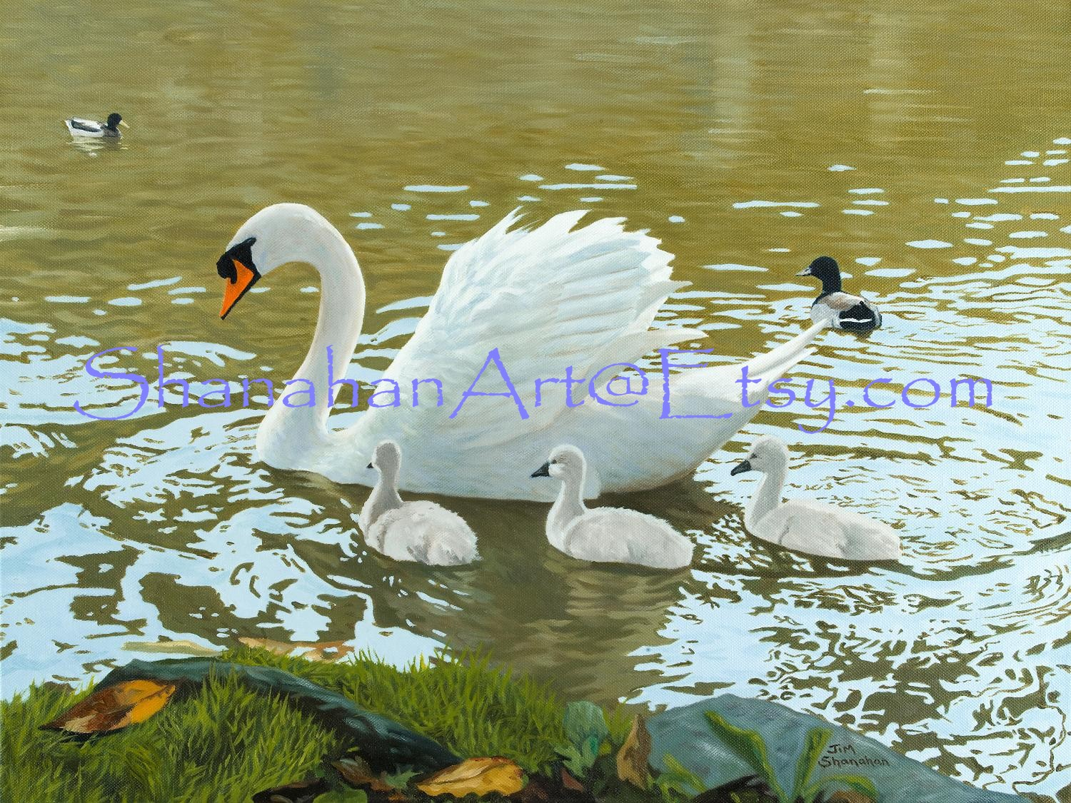 Swan and Cygnets -- Sold