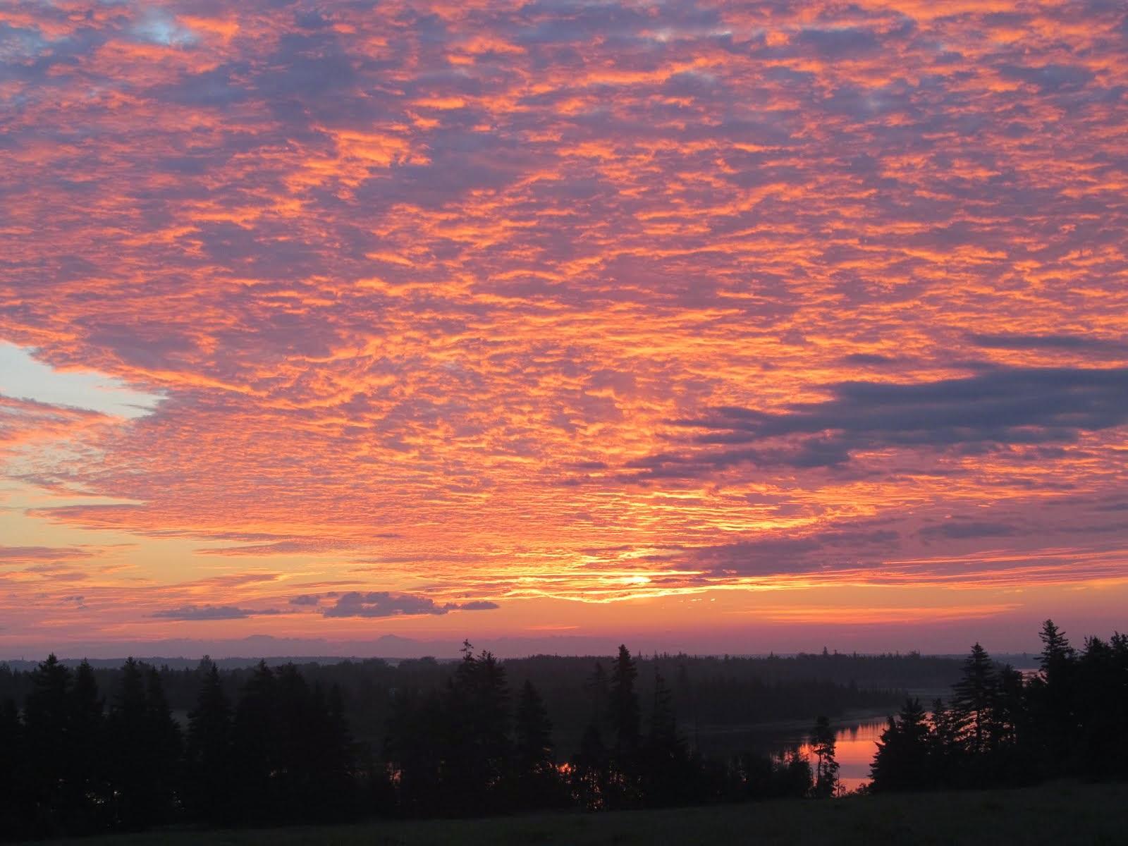 Sunrise over Eglington Bay