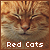 I like red/orange cats