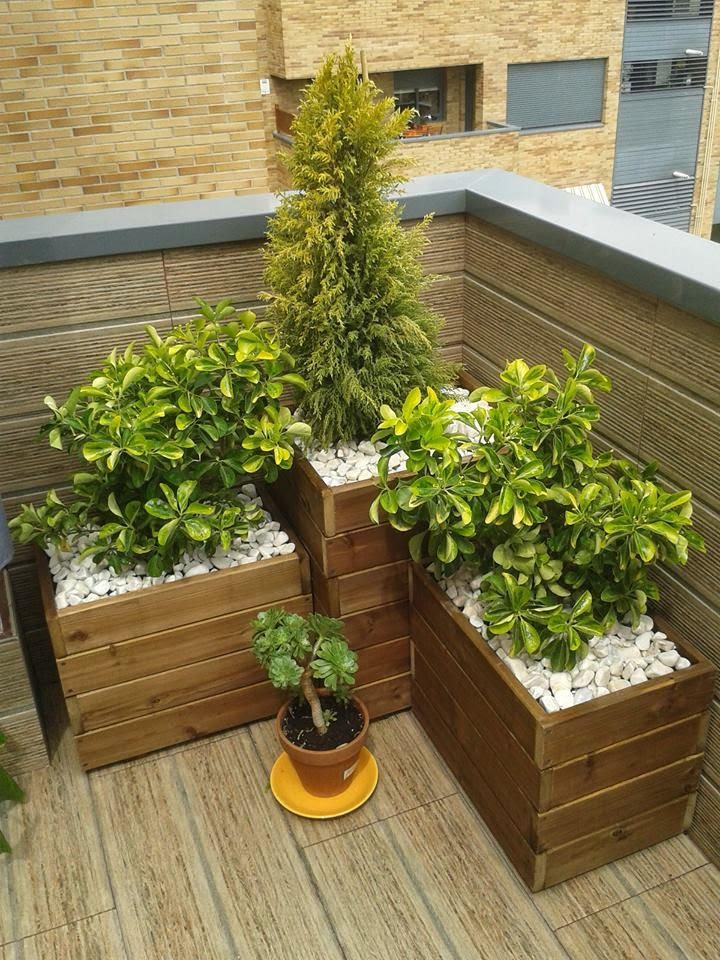 Jardineras para exterior jardinera rectangular con planta - Jardineras de madera caseras ...