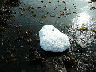 summer iceberg