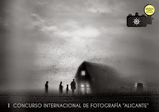 http://issuu.com/clubfotograficoalicante/docs/catalogo_internacional