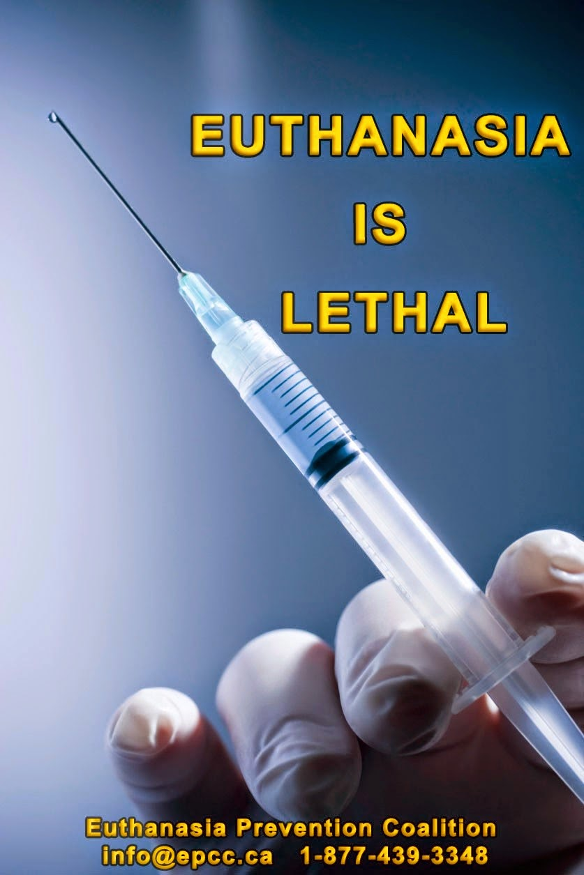 an overview of the practice of euthanasia The practice of euthanasia, its legalization, and acceptance in various societies is also influenced by public debate and media reports with the increased acceptance .