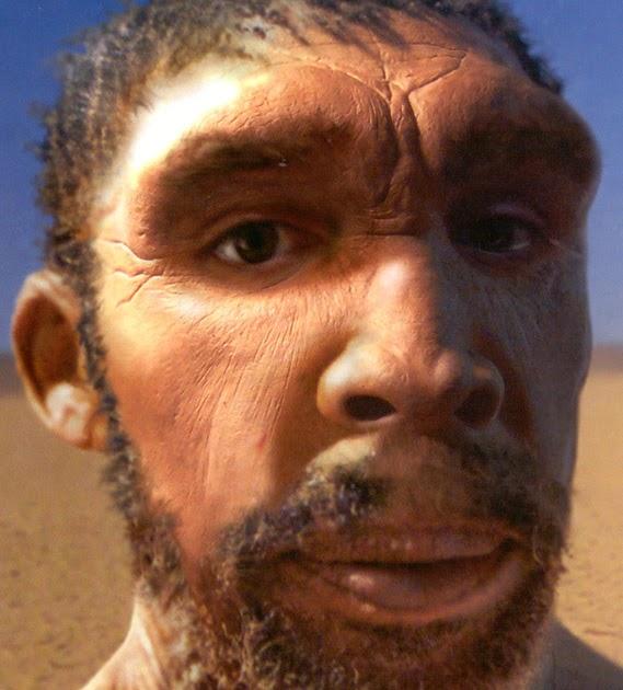historika homo rodhesiensis la l nea africana hacia el. Black Bedroom Furniture Sets. Home Design Ideas