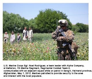 http://publicintelligence.net/us-afghan-patrolling-poppy-fields-2012/