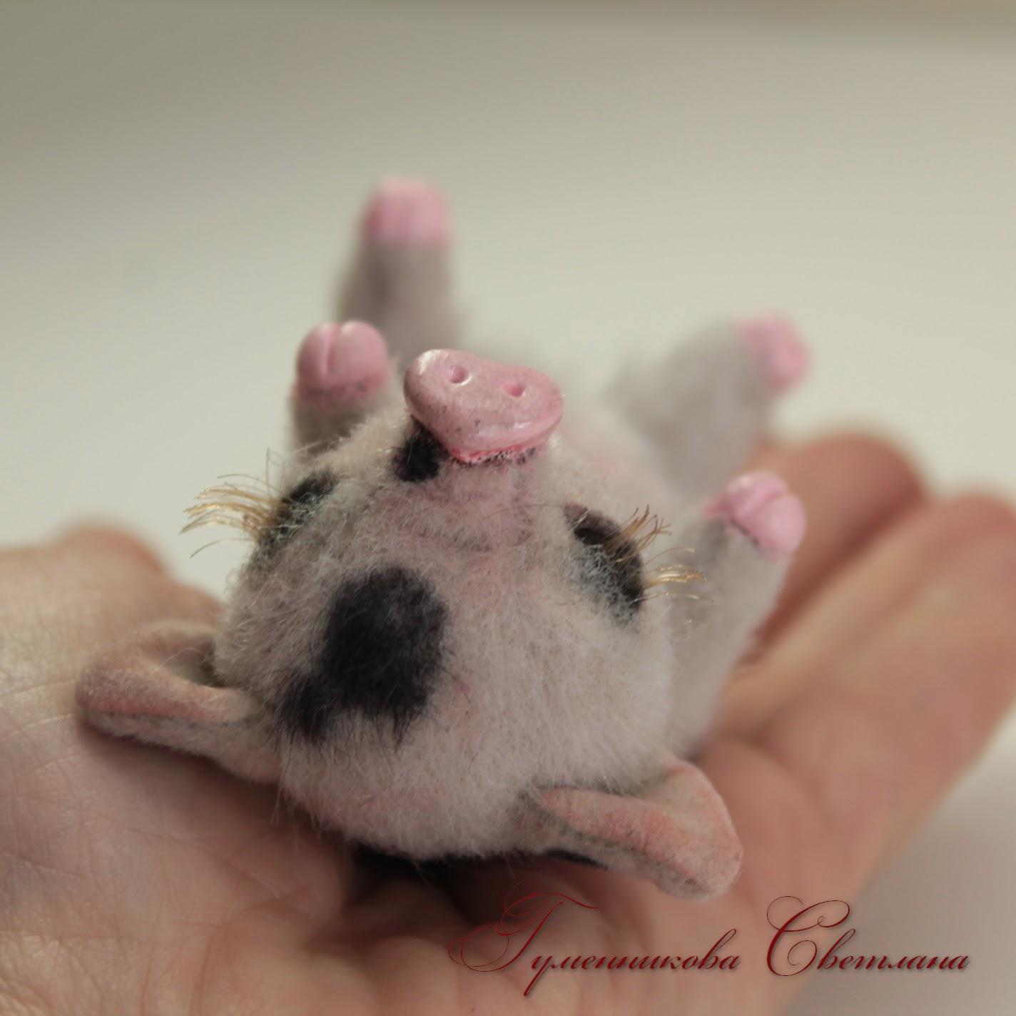 свинка, поросята
