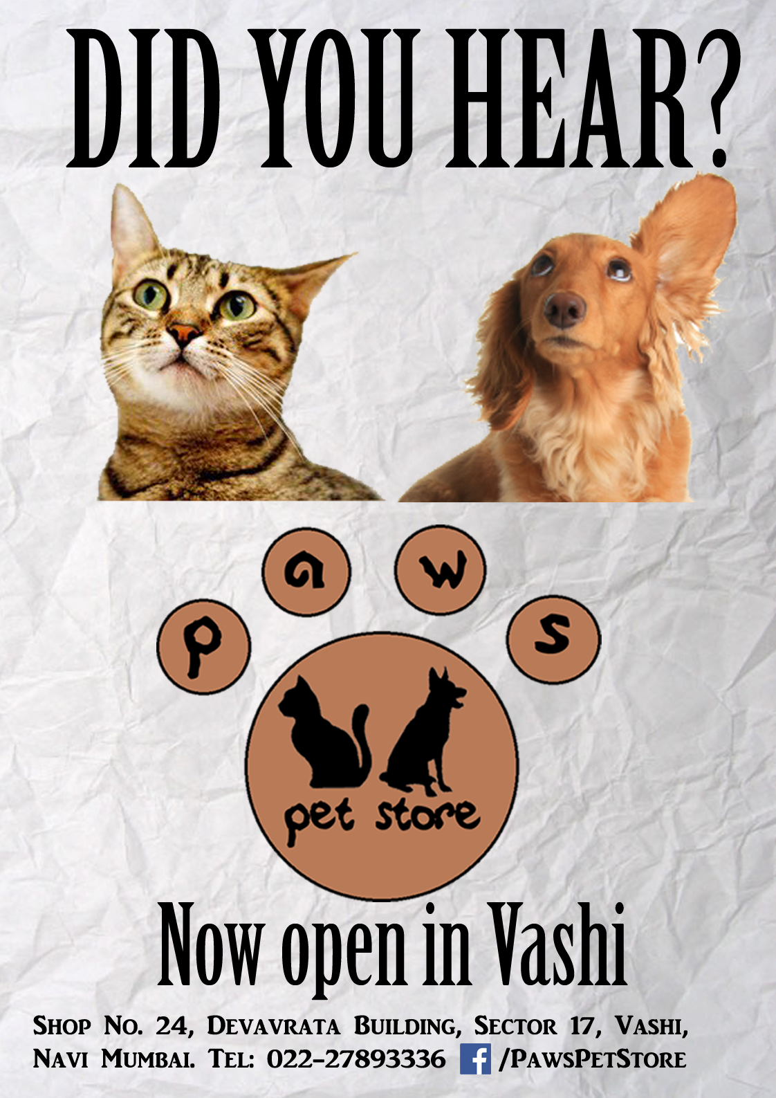 paws pet store print ad