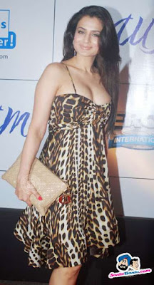 Amisha Patel - Hot Amisha Patel At Mausam Movie Premiere