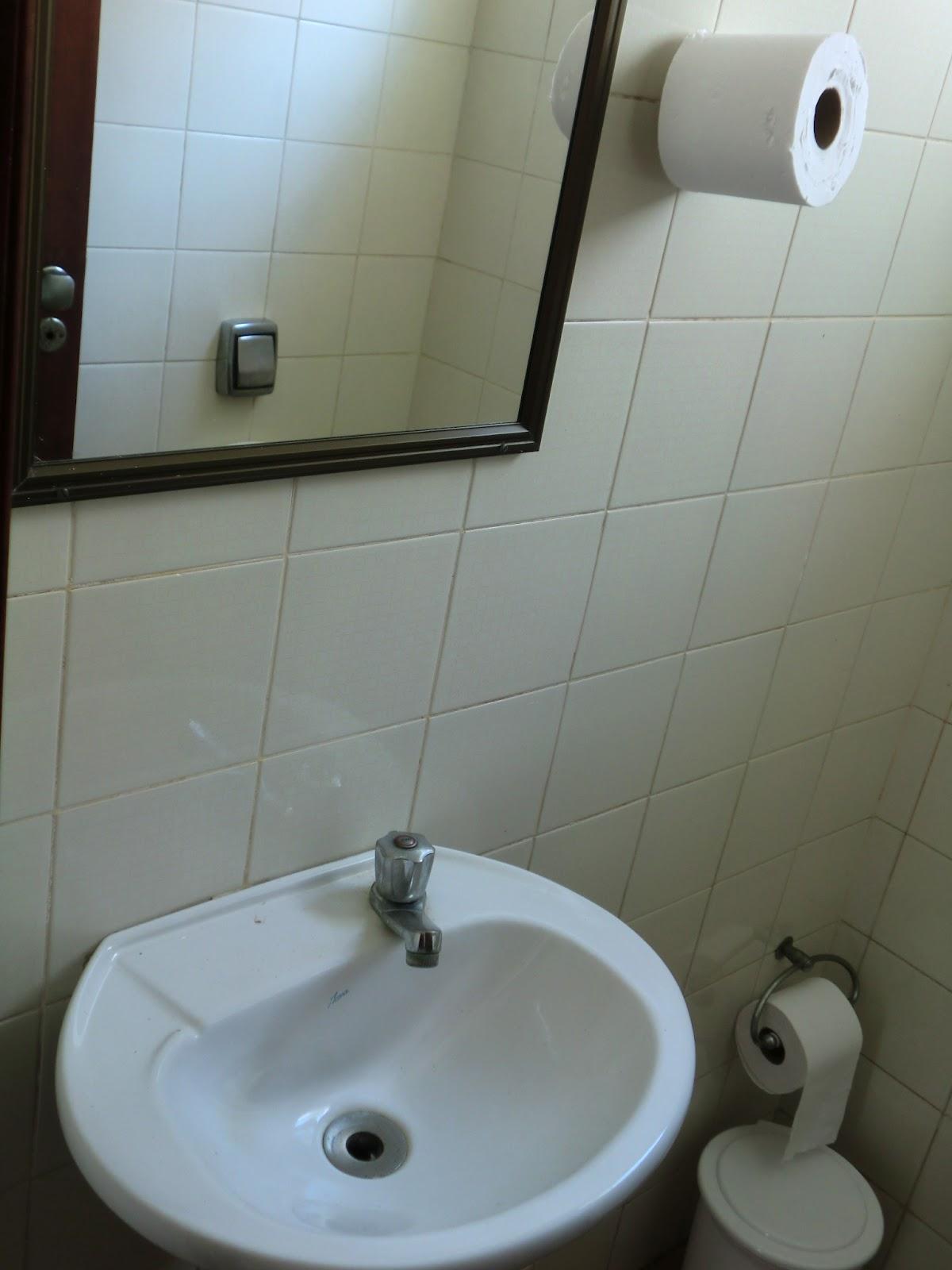 espelho tem mais de 20 anos e esta inteirao talvez eu use ele mas  #4F697C 1200x1600 Banheiro De Cachorro Funciona