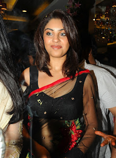 Richa Gangopadhyay in Spicy Transparent Black Saree (65)