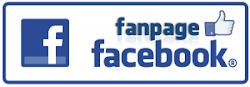 Seguir Fanpagen Blog