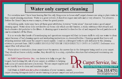 Water-Only Carpet Cleaning Perspective From an Expert