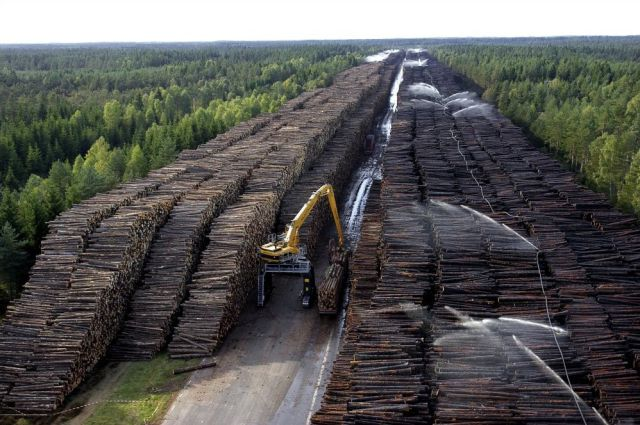 [Obrazek: worlds_biggest_timber_storage_640_01.jpg]