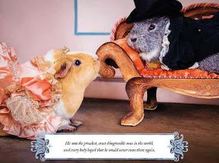 A Guinea Pig Pride & Prejudice - Mr Darcy and Elizabeth Bennet