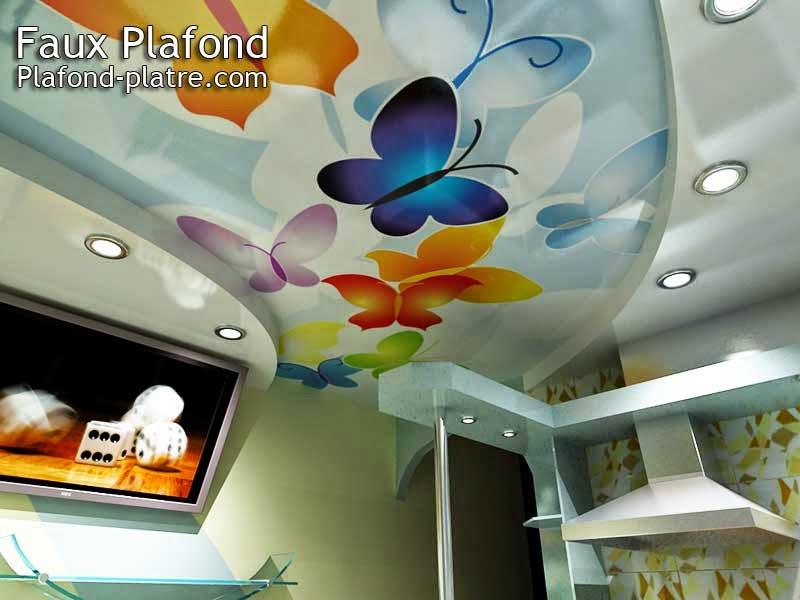 Idée conception Faux plafond papillon