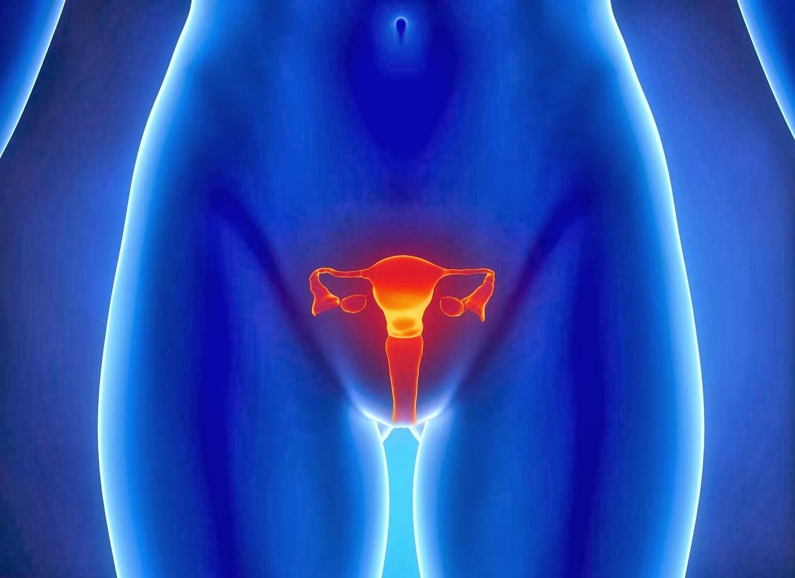 Cara Cepat Mengobati Vagina Kering Dengan Obat Alami