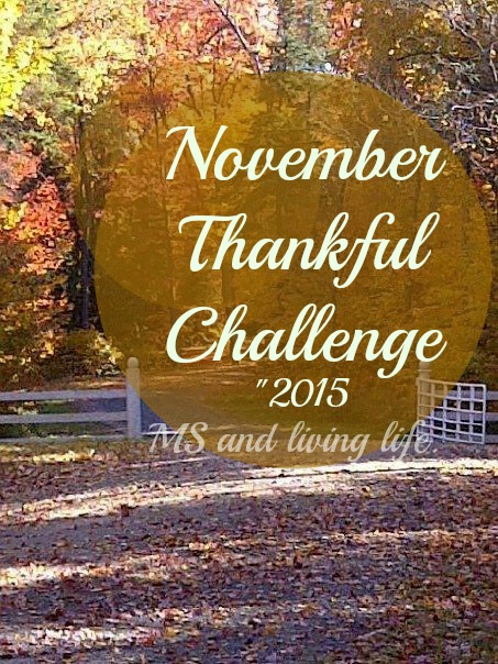 November Thankful Challenge with msandlivinglife