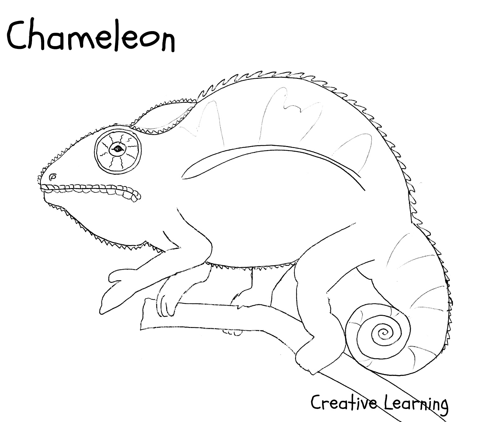 chameleon coloring pages - photo#32