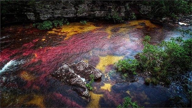 Vẻ đẹp bí ẩn của 1 dòng sông - không tin nổi