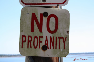 No Profanity Sign