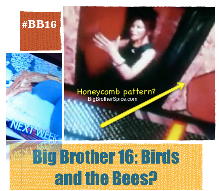 Big Brother 16 House Birds And The Bees Theme