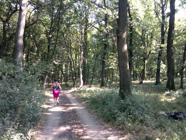 Alergător şi maseur la Maratonul Târnavei, alături de Supermămici Alergătoare. Din Timişoara la Târnăveni, 29 August 2015. Traseu 02