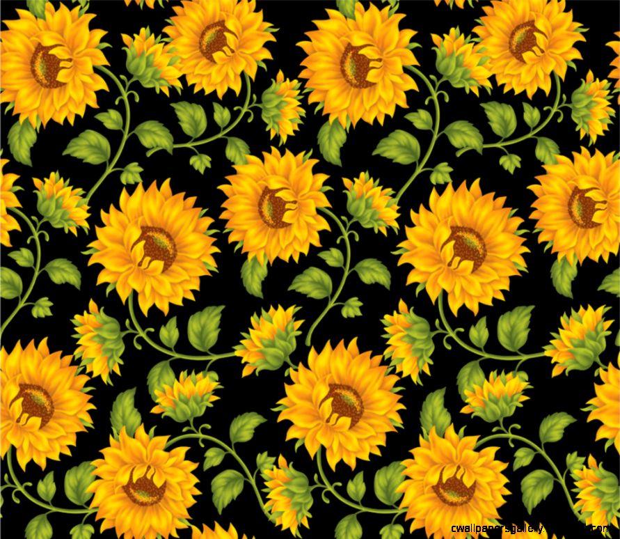 Black Sunflower Wallpaper  cute Wallpapers