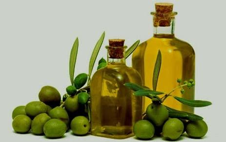 manfaat minyak buah zaitun