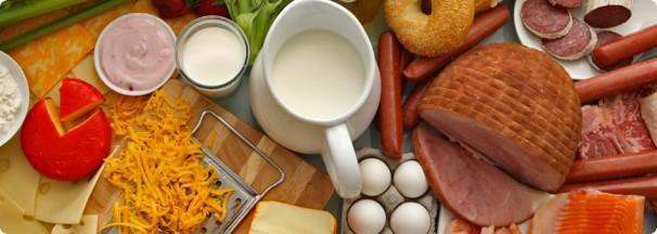 eiwitrijke voeding lijst