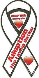 You will receive this magnet with any donation of $6 or more (ChipIn)