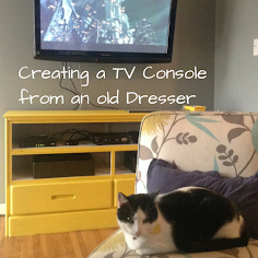 Creating a TV Console