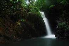 Selva Cayo, Belize