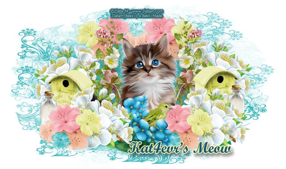 Welcome to Kat4evr's Meow