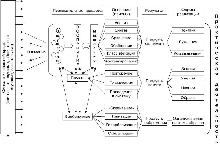 Рис.Схема обработки информации