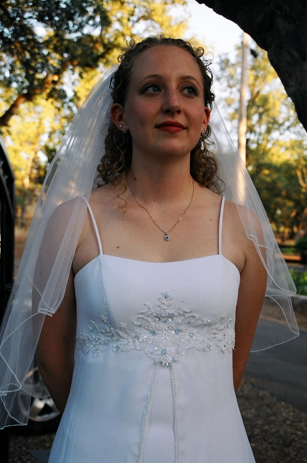 Wedding Dresses Tadashi Shoji