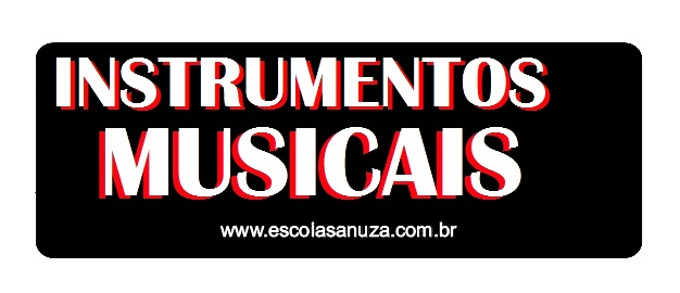 COMERCIO DE INSTRUMENTOS E ACESSÓRIOS MUSICAIS