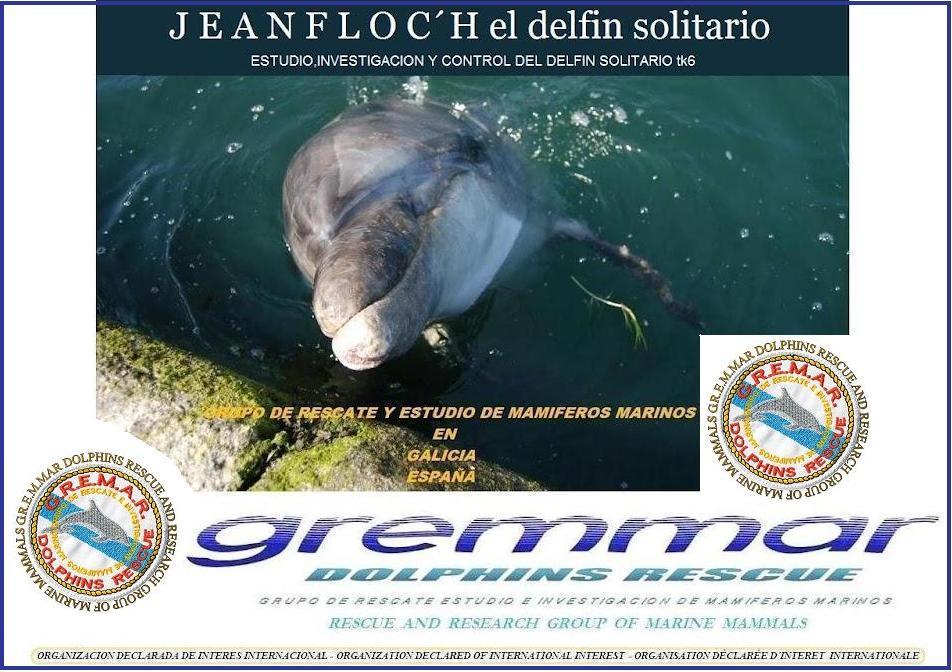 JEAN  FLOC´H el delfín solitario