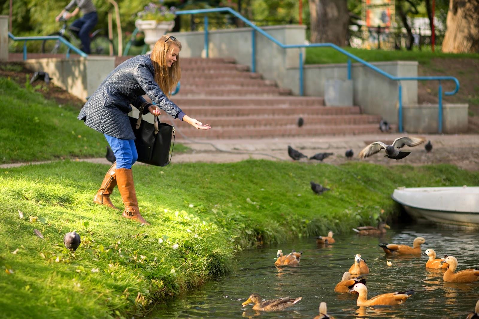 девушка в парке, индивидуальная фотосессия, осень, газон, озеро, утки, кормить уток