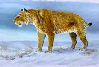 5 Kucing Besar Zaman Prasejarah [ www.BlogApaAja.com ]