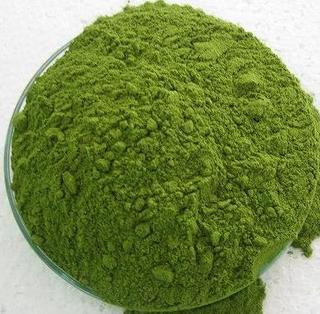 Moringa, Oleifera