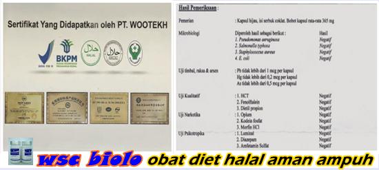 obat diet halal di konsumsi muslim