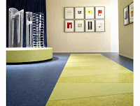 Linoleum floor is a type of eco friendly flooring