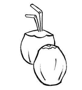 desenho de coco fresco